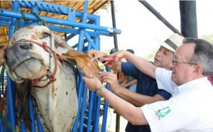 agricultura lanza